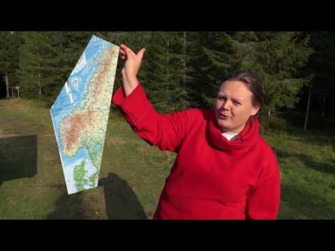 Norwegian literary history in a Norwegian wood