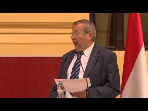 Kovács Árpád beszéde / Gazdasági konferencia 2/2 - 2014.07.17.