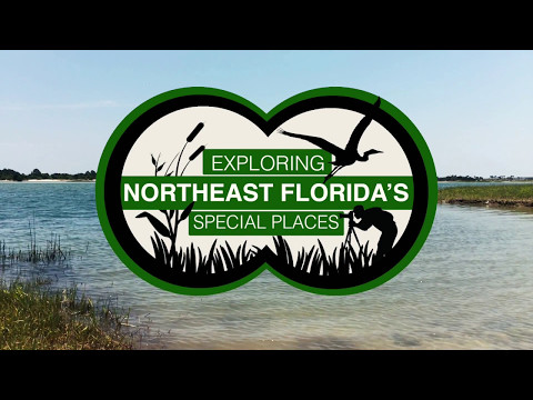 Exploring Northeast Florida's Fort George Island Cultural State Park