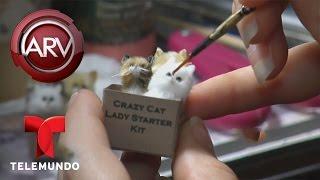 Artistas crean obras de arte miniatura en Los Ángeles   Al Rojo Vivo   Telemundo