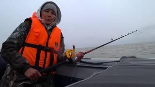 Первая морская рыбалка 2020