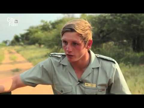 Dinokeng Game Reserve - Pretoria - Gauteng