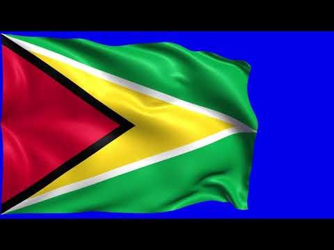 Guyana Flag [Chroma, Green Screen, Blue Screen]