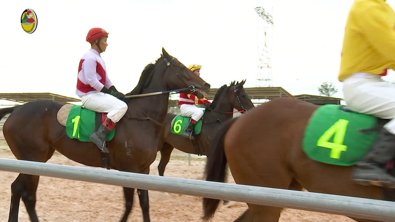 Kết quả hình ảnh cho đua ngựa đubai