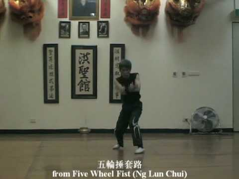Master Chen Yong Fa techniques from Five Wheel Fist 陳永發師傳練習基本功-五輪捶