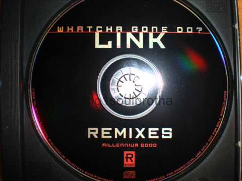 "Link ft. Flipmode Squad ""Whatcha Gone Do"" (Remix Clean)"