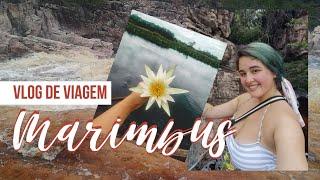 MARIMBUS, conheça o Mini Pantanal da Chapada Diamantina   #VlogsdeViagem   Júlia Orige