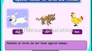 Special Names