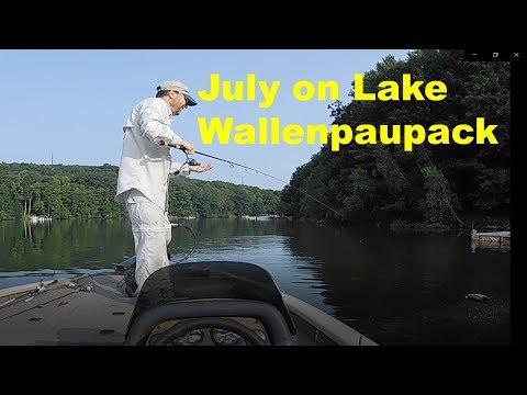 Fishing A Highland Reservoir In July: Ft Lake Wallenpaupack