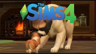 The SIMS 4 🙊питомцы 🙈 + как скачать симс со всеми дополнениями