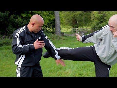 Wing Chun kung fu glossary  gaun sao