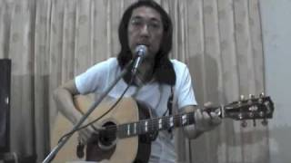 fly me to the moon-acoustic cover