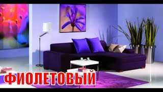 видео Фиолетовый интерьер, использование и сочетание фиолетового цвета.