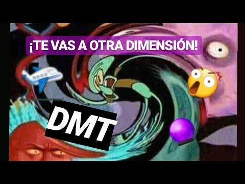 Experiencia DMT 😵🎆 No.2 (FUMANDO🚬XANGA)