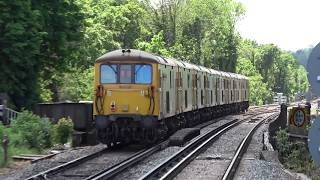 Eight Class 73s passing Barnes and Orpington