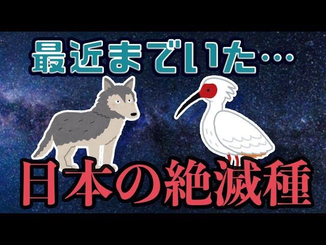 絶滅 危惧 種 日本