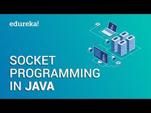 Socket Programming In Java   Client Server Architecture   Java Networking   Edureka