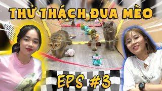 Thử thách đua mèo cùng MÍU VÀ SOFI  ThyLinh'sShow  TẬP 03