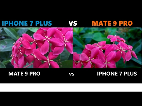 MATE 9 PRO vs IPHONE 7 PLUS camera test review