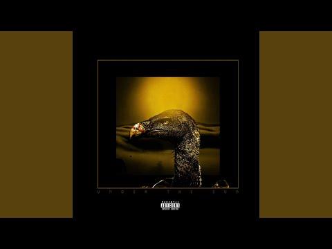 I'm No Vulture (feat. Thokozile)