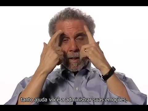 Daniel Goleman - Inteligência Emocional