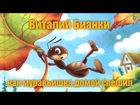 Как муравьишка домой спешил читать мультфильм