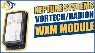Neptune Systems VorTech/Radion WXM Module: What YOU Need to Know