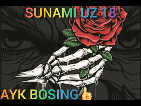 SUNAMI UZ 18
