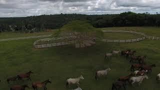 Fazenda Santa Rita - Belmonte, Bahia. Vista Aérea.
