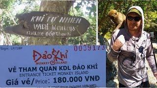 Вьетнам. Нападение диких обезьян. Monkey island