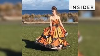 Homemade dress transforms from ball gown to butterfly