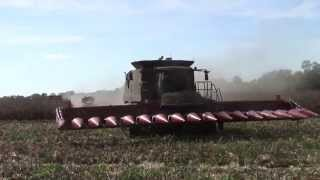 Opening a Corn Field 28 Rows at a Time