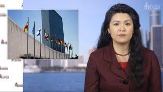 Nigerian Ambassador Slams UN for issuing LGBT Postage Stamp