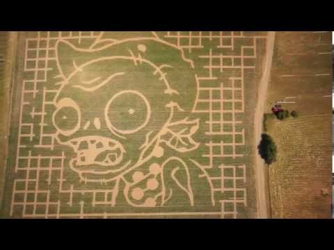 Spotted in Oregon: Real Five-Acre Plants Vs. Zombies Corn Maze