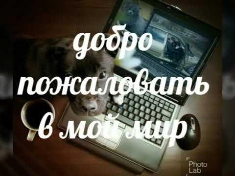 Эркин. Т.Х.facebook & Odnokl.Ветерок