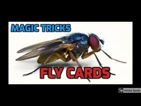 MAGIC TRICKS VIDEOS IN TAMIL #418 I FLY CARDS (SHORTER VIRSION) @Magic Vijay