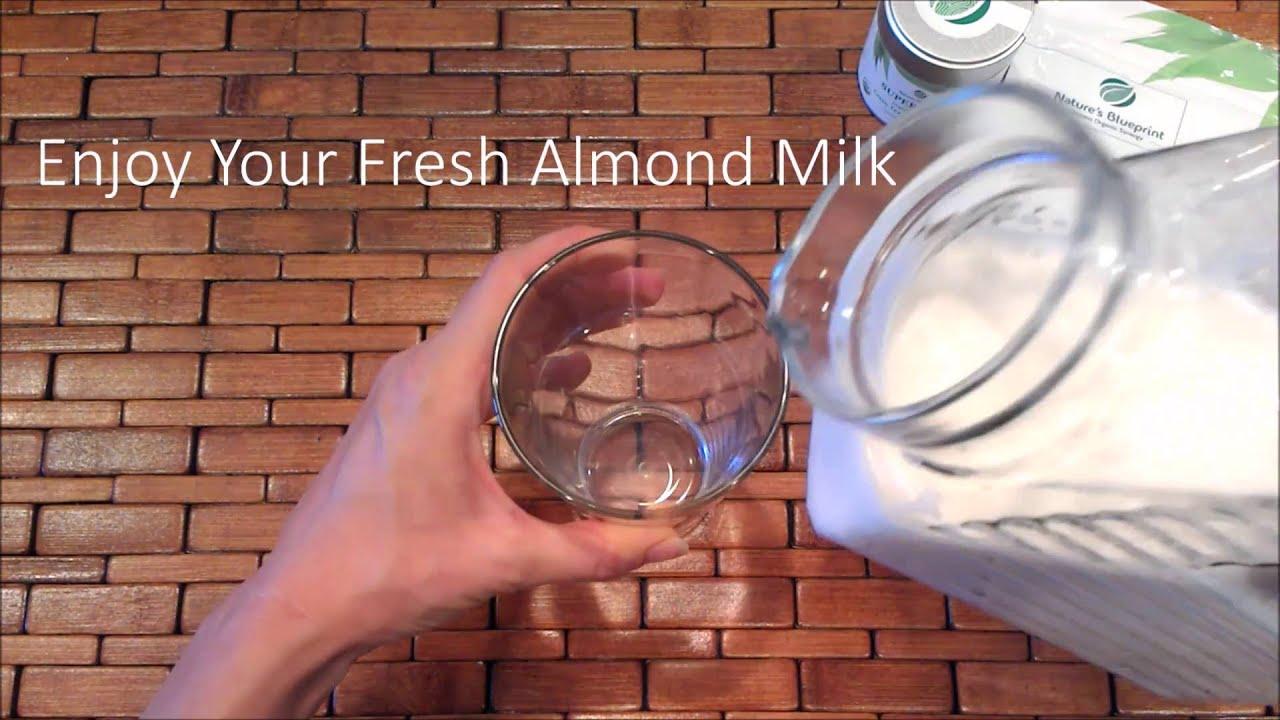 Almond milk recipe organic homemade almond milk by natures almond milk recipe organic homemade almond milk by natures blueprint malvernweather Images