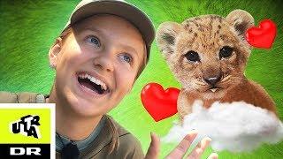 Helt Vildt: Johanne holder løveunge! | Ultra Ægte