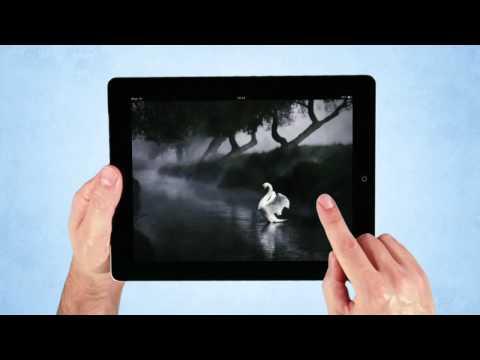 Telegraph iPad edition