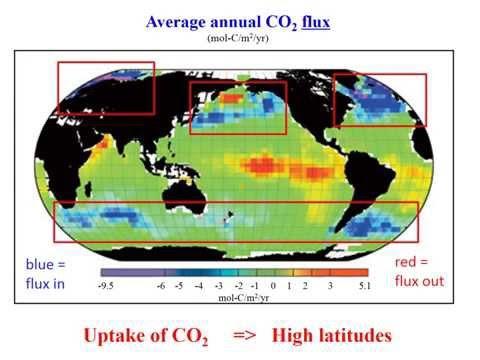 Carbon in the Ocean