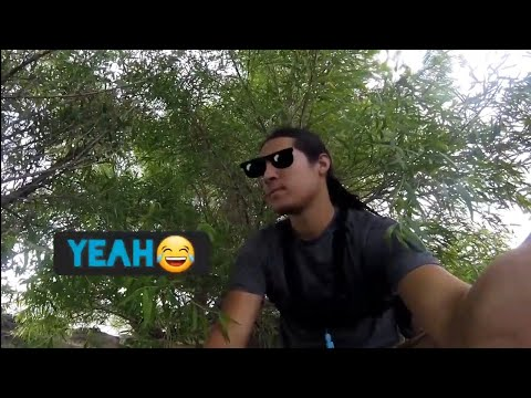 Ashurst Lake Wild Rainbow Trout Catch N Cook Arizona