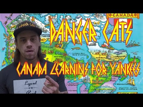 Danger Cats - Canada Learnins For Yankees