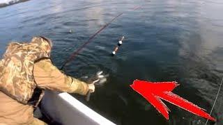 ВОТ ЭТО КАБАНЫ! ПО ТРИ СРАЗУ! ТАКОГО ПРОСТО НЕ БЫВАЕТ! сплавная рыбалка на Енисее на покаток