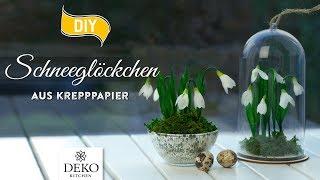 DIY: Frühlingsdeko mit Schneeglöckchen aus Krepppapier [How to] Deko Kitchen