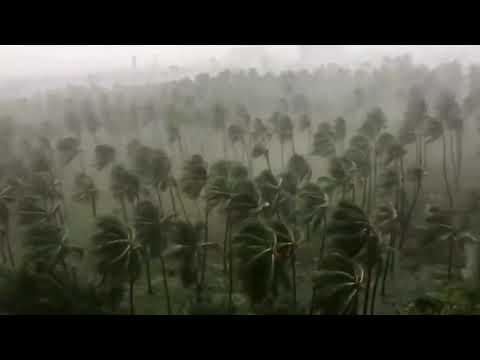 Tragedi topan haiyan di filipina dating
