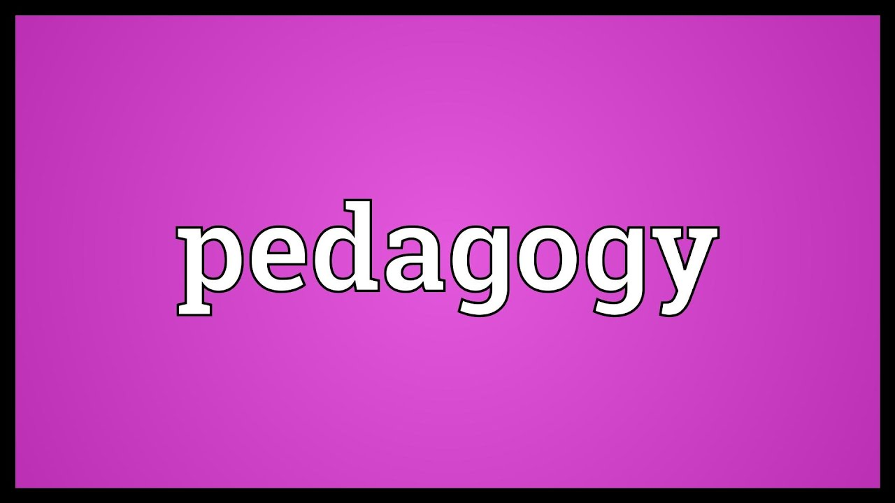 what does the word pedagogy mean