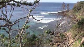 Australia:  Lord Howe Island:  Paradise Found