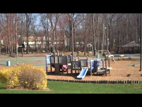 Community Video: Parsippany, NJ