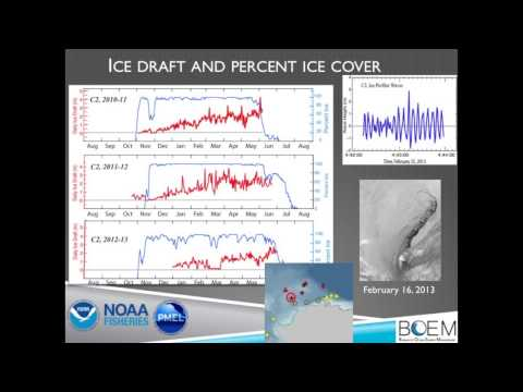 Strait Science : Chukchi Sea Life - Part 2
