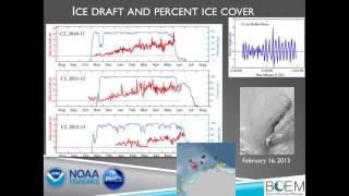Strait Science : Chukchi Sea Life - Part 2